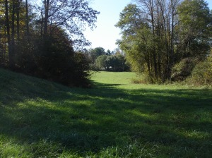 Hayfield Next to Neighbor's House